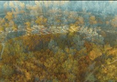 «Времена года» в Суханово Парк. Осень